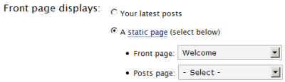 wp_static-front-page.png