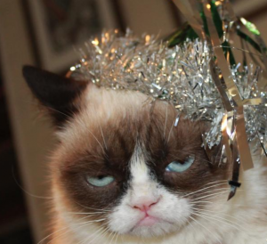 Grumpy cat new year